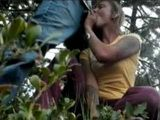 Amateur Couple Fucks In The Woods